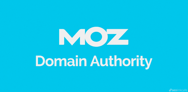 SEO Audit Checklist for Startups - You Lack Domain Authority